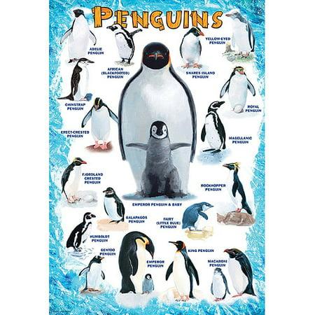 Penguins 100-Piece Puzzle