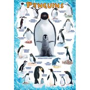 Penguins 100-Piece Puzzle