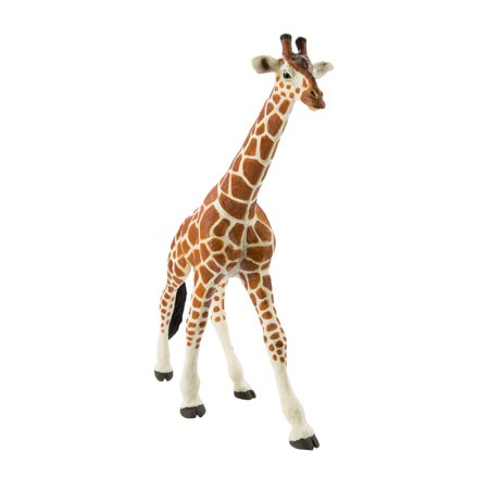 Kalencom Giraffe - Safari Ltd Wildlife Wonders Reticulated Giraffe