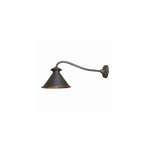 World Imports Dark Sky Large Outdoor Wall Lamp in Bronze