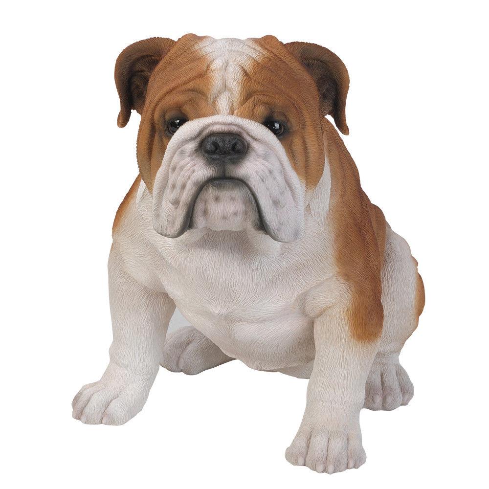 "18"" Tall Life Size English Bulldog Dog Figurine Statue by"