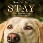 Stay - Audiobook