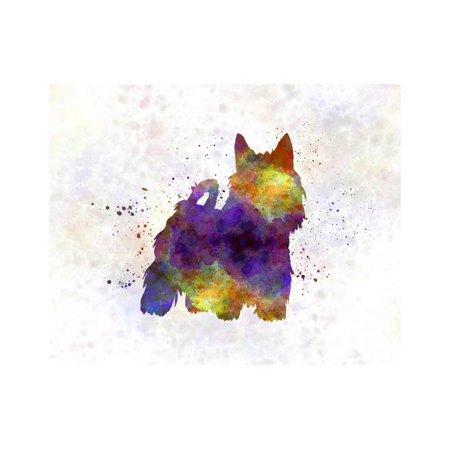 Australian Silky Terrier in Watercolor Print Wall Art By paulrommer
