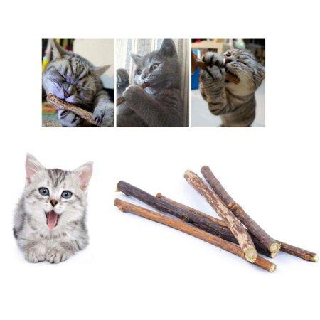 40 pcs Natural Matatabi Silvervine Sticks Silver Vine Sticks for Cats PET Cat Asiatic Catnip - Silver Series 40 Stock