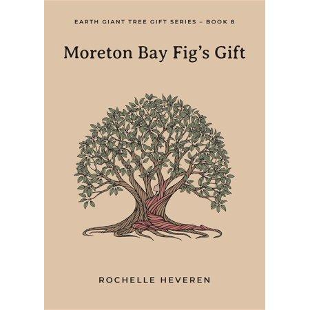 Moreton Bay Fig's Gift - eBook (Moreton Bay Fig Tree In Santa Barbara)
