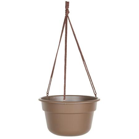 - Bloem Dura Cotta Hanging Basket 12