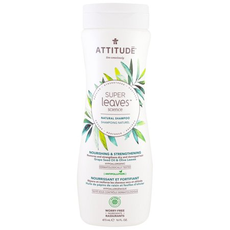 ATTITUDE  Super Leaves Science  Natural Shampoo  Nourishing   Strengthening  Grape Seed Oil   Olive Leaves  16 oz  473 (Best Shampoo For Super Oily Hair)