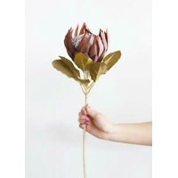 1PK Artificial King Protea with Dried Look, Home-New