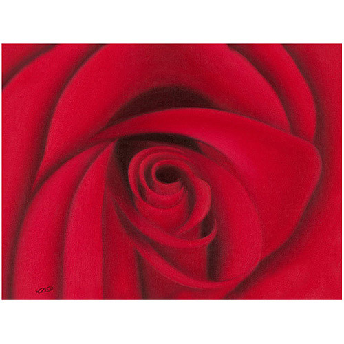 """Trademark Fine Art """"Red Rose"""" Canvas Wall Art by Rio"""
