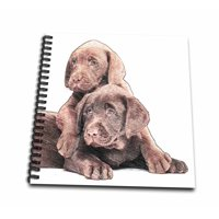 3dRose Chocolate Labs art colored pencils - Mini Notepad, 4 by 4-inch