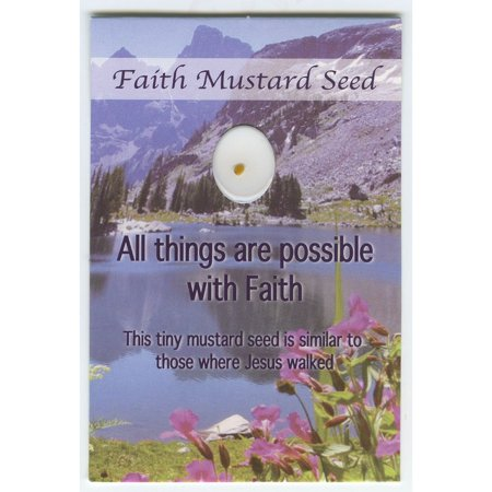 Faith Mustard Seed Wallet Cards with Mustard Seed (Pack of