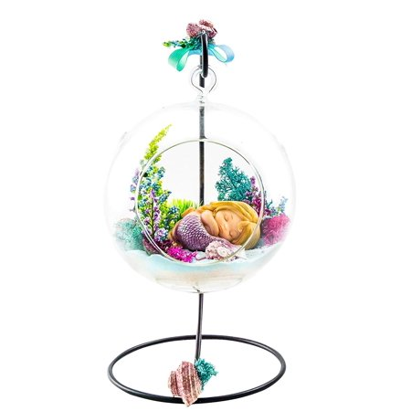 "Terrarium Kit | Sleeping Mermaid | Mermaid Series | Complete Terrarium Gift Set with Stand | 6"" Glass Globe Terrarium Container 