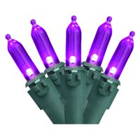 Northlight 50 ct. LED Mini Lights with Green Wire 4 in. Spacing