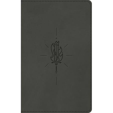 ESV Kid's Thinline Bible (Trutone, Sword of the