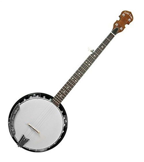 Gold Tone 5-String Resonator Banjo w  Hard Case by Gold Tone