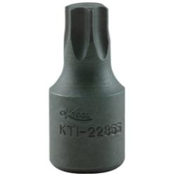 BITSOC T55 3 8D IMP EXT TRX