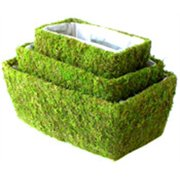 Super Moss 55020 3 Piece Assorted Shasta Moss Baskets Pack of 6