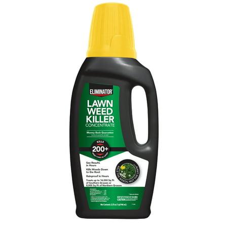 Eliminator Lawn Weed Killer Concentrate, 32-Fluid (Best Weed Odor Eliminator)