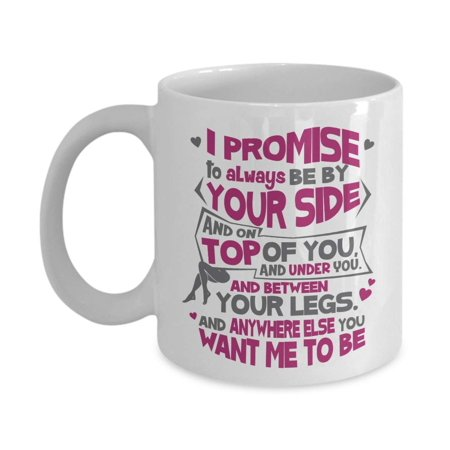 I Promise To Always Be By Your Side Funny Sexy Valentines Day Coffee & Tea Gift Mug, Cup Decor, Stuff, V-day Party Decorations & Best Birthday Or Anniversary Gifts For A Wife To Be Girlfriend