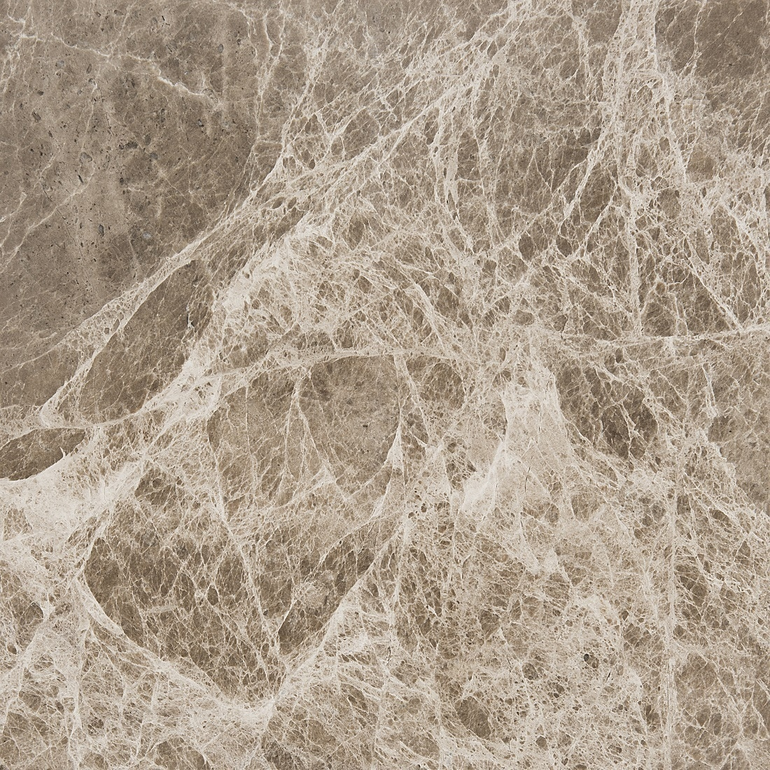 Marbletiledirect Cedar Emperador Brown Marble 12-inch x 12-inch x 3/8-inch Polished and Beveled Tiles