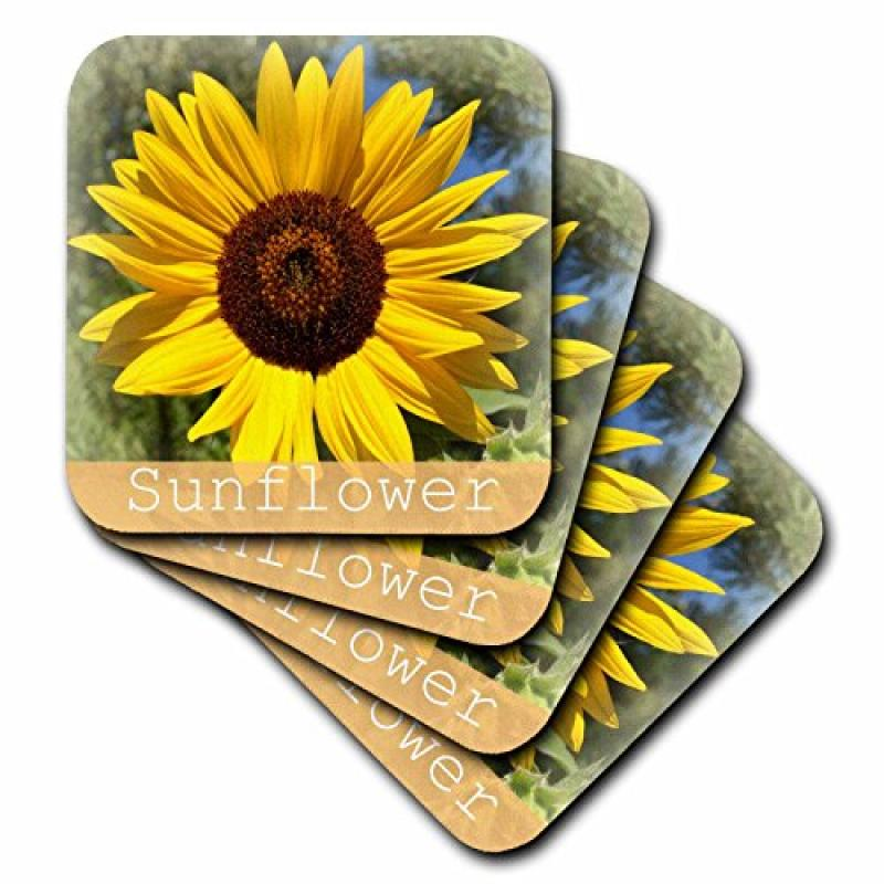 3dRose Bright Yellow Sunflower- Flowers- Macro Photography, Ceramic Tile Coasters, set of 4 by 3dRose