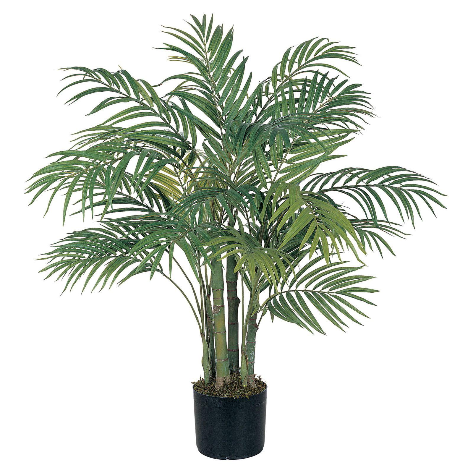 3' Areca Silk Palm Tree