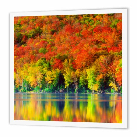3dRose USA, New York, Adirondack Mountains. Autumn reflects in Heart Lake., Iron On Heat Transfer, 8 by 8-inch, For White (Best Color To Reflect Heat)