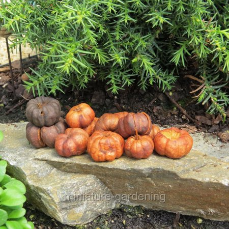Miniature Putka Pumpkins, 25 Pieces for Miniature Garden, Fairy Garden](Wholesale Foam Pumpkins)