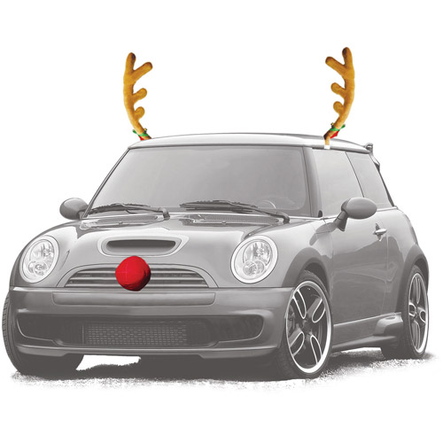 Reindeer Auto Outfit 2012