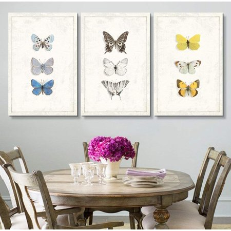 wall26 - 3 Panel Canvas Wall Art - Multiple Butterfly Species Artwork Series - Giclee Print Gallery Wrap Modern Home Decor Ready to Hang - 16