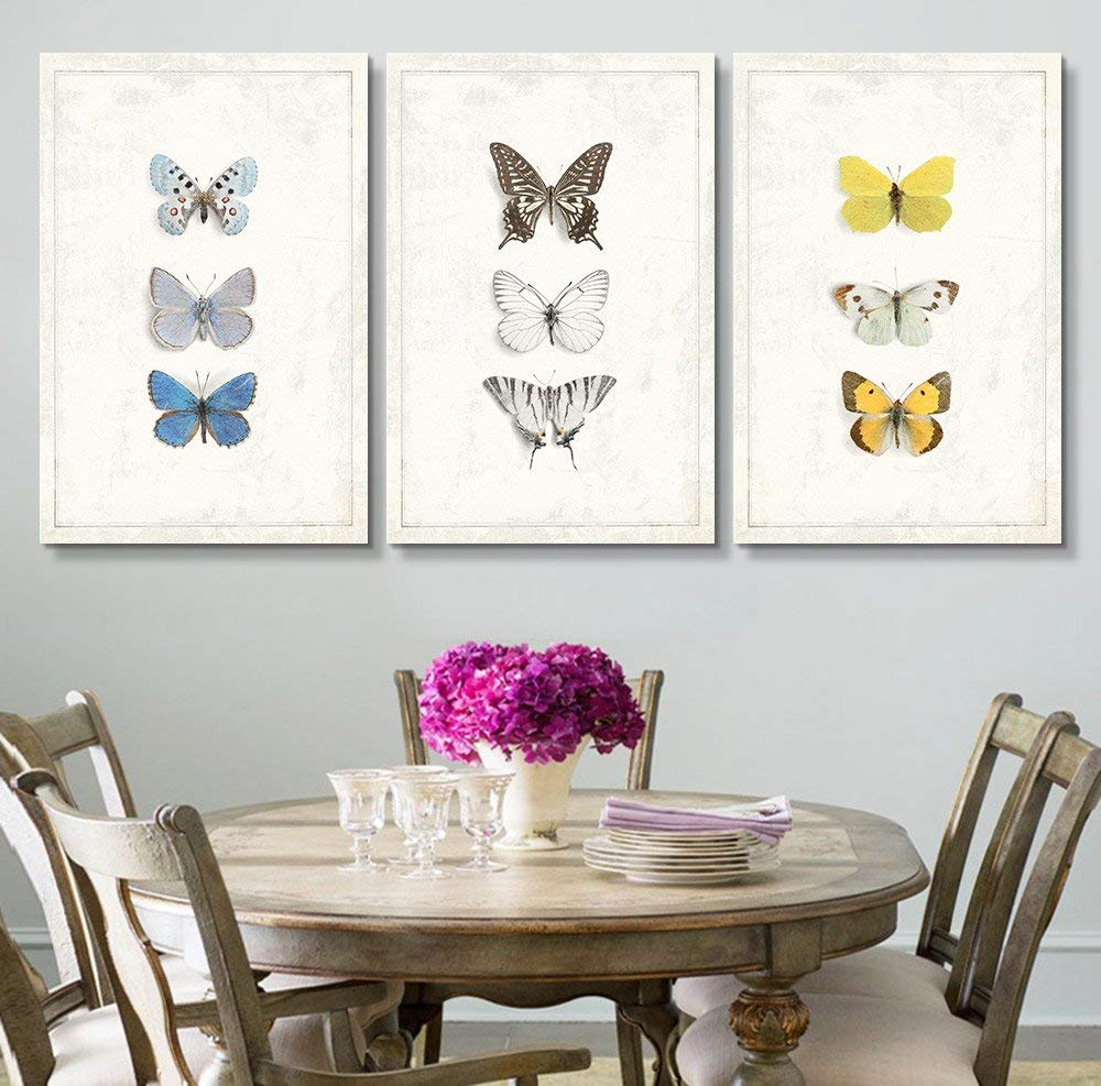 "wall26 - 3 Panel Canvas Wall Art - Multiple Butterfly Species Artwork Series - Giclee Print Gallery Wrap Modern Home Decor Ready to Hang - 16""x24"" x 3 Panels"