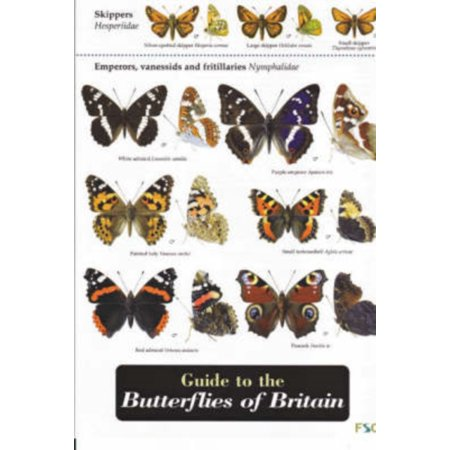 Guide to the Butterflies of Britain (Field Studies Council Occasional Publications) (Map)