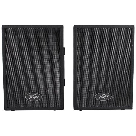 Peavey PVi10 Two 10