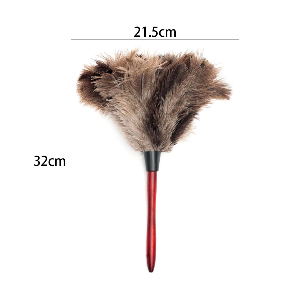 12//Case Black//Tan 23 Professional Ostrich Feather Duster