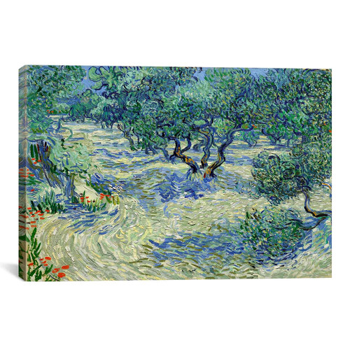 iCanvas 'Olive Orchard' by Vincent van Gogh Painting Print on Canvas
