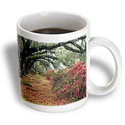 3dRose Moss Covered Trees In Charleston Garden South Carolina, Ceramic Mug, 11-ounce