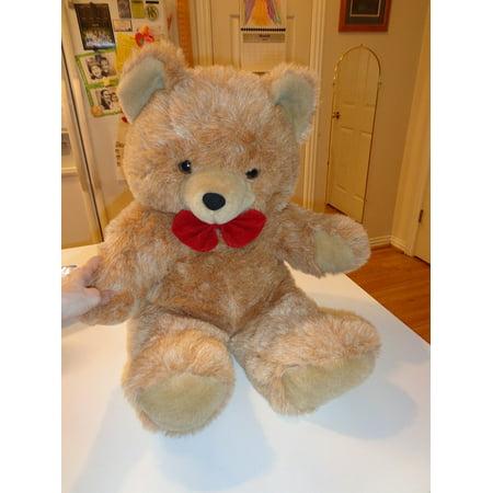 Supreme Teddy Center - Canvas Print Animal Bear Teddy Bear Stuffed Animal Toy Stretched Canvas 10 x 14