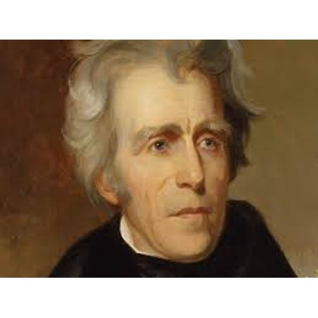 The Systematic Disenfranchisement of Native People in the United States Under Andrew Jackson -