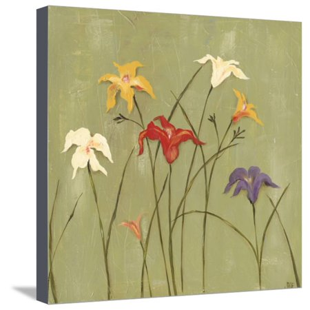 Jeweled Lilies I Stretched Canvas Print Wall Art By Jade Reynolds