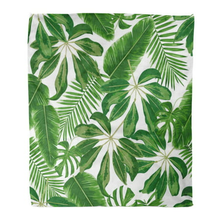ASHLEIGH Throw Blanket Warm Cozy Print Flannel Colorful Leaf Tropical Branches and Leaves Detailed Botanical Pattern Green Comfortable Soft for Bed Sofa and Couch 58x80 Inches