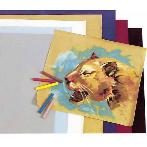 "Hygloss Acid-Free Velour Paper, 42 lb, 8.5"" x 10"", Assorted Colors, 20pk"
