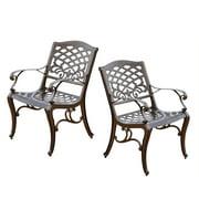 Cast Aluminum Bronze Outdoor Chair (Set of 2)