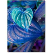 "Trademark Fine Art ""Neon Hearts"" Canvas Wall Art by Patty Tuggle"