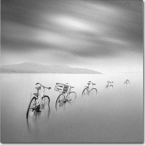 "Trademark Fine Art ""My Way"" Canvas Art by Moises Levy"