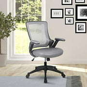 """Height Adjustable Arms Mid-Back Mesh Task Office Chair, 25"""" W x 25"""" D x 34"""" H, Gray"""