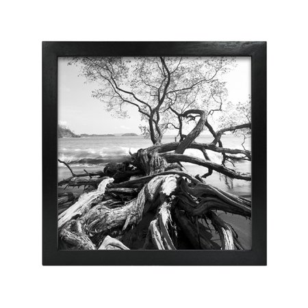 MCS 6x6 Solid Wood Art Frame In Black