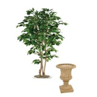 6 ft. Bushy Green Ficus Tree in Tan Fiberglas Classic Urn