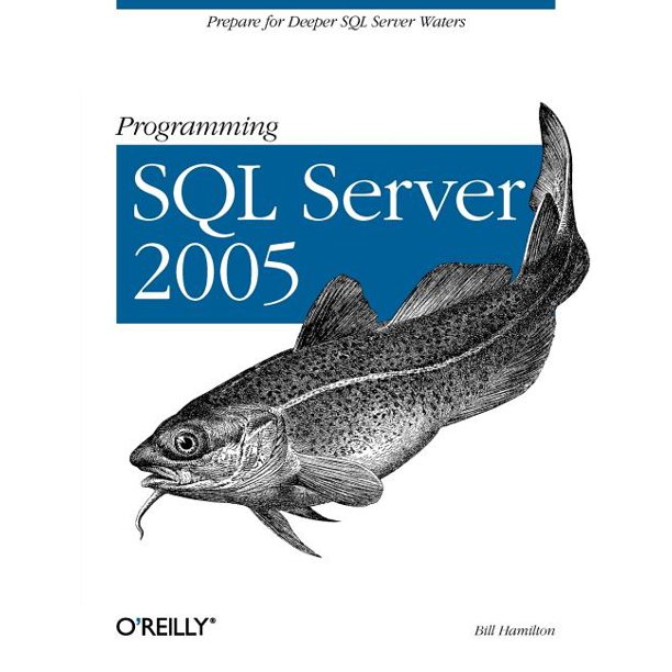 Programming SQL Server 2005: Prepare for Deeper SQL Server Waters (Paperback)