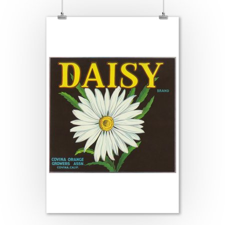 Daisy Brand Citrus Crate Label - Covina, CA (9x12 Art Print, Wall Decor Travel Poster) for $<!---->