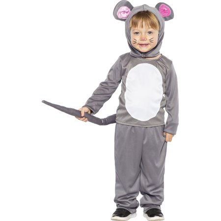 Homemade Mouse Costume (Childs Little Grey Mouse Costume X-Small)